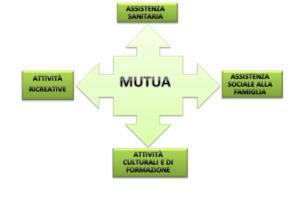 Immagine Mutua Plurisettore
